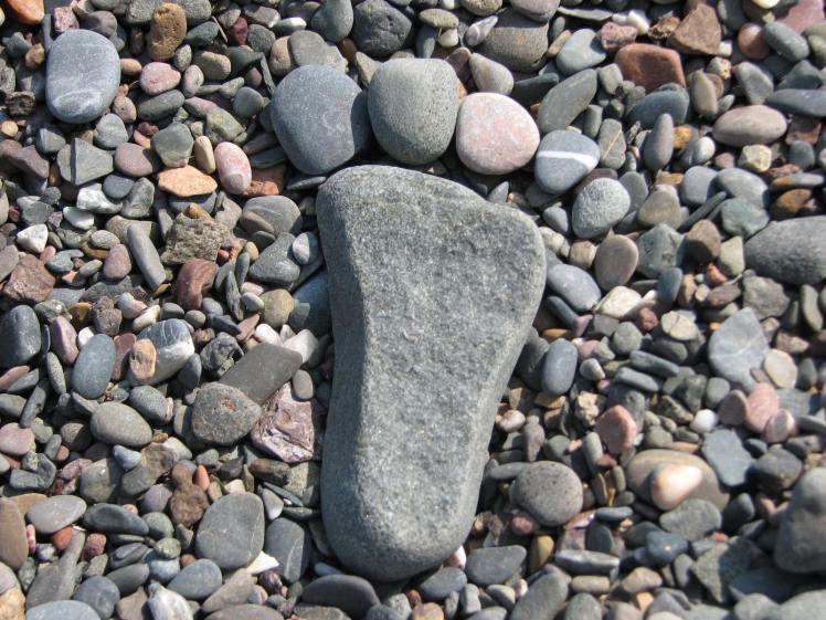 Pied de roche
