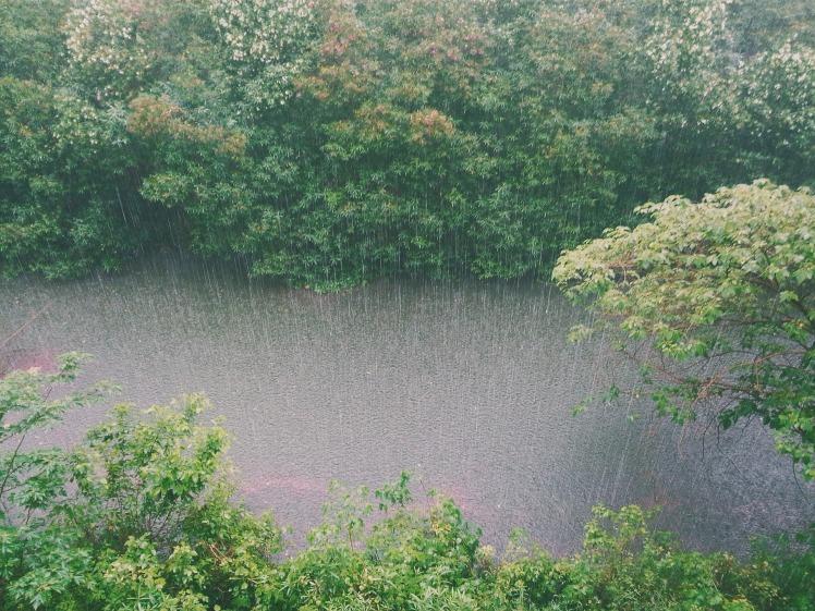 Larmes + pluie