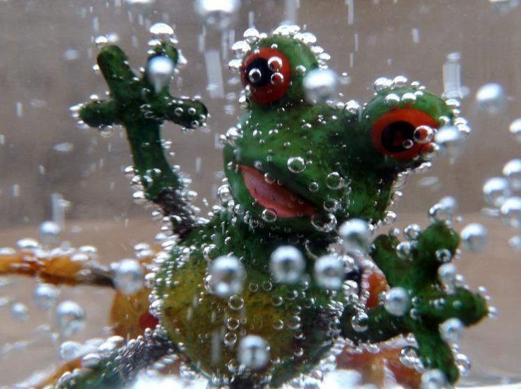Raoul chez les grenouilles