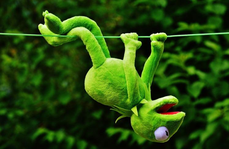 Les grenouillettes