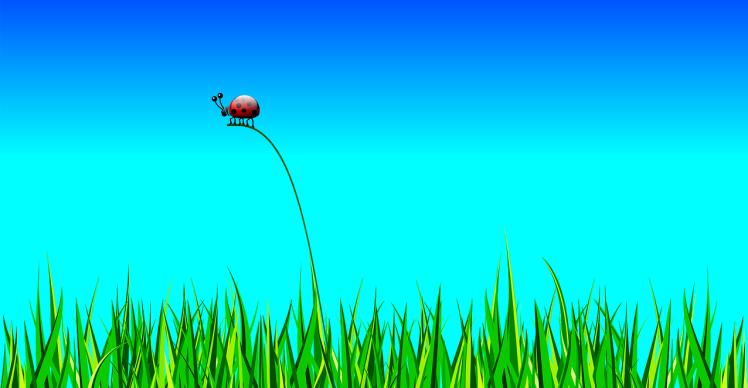 ladybug-158326_1280