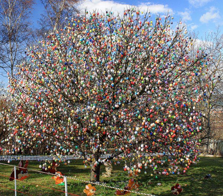 L'arbre à oeufs