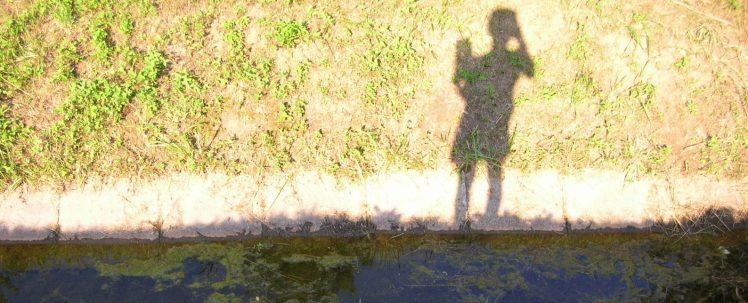 L'ombre d'Anne